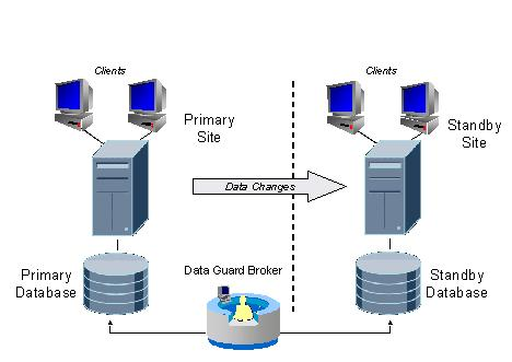 morphology diagram in architecture oracle data guard concept « pavan dba's blog